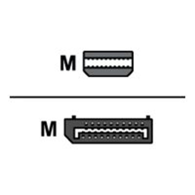 ViewSonic CB-00010958 DisplayPort cable - DisplayPort (M) to Mini DisplayPort (M) - 6 ft - black - for  VA2252  VA2452  VG2253  VG2449  VG2453  VG2753  VX2376