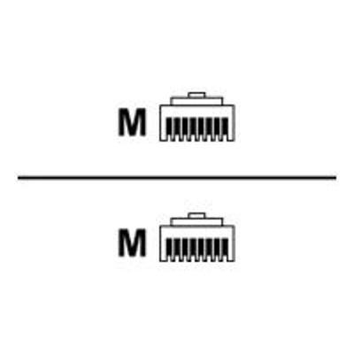 Black Box C5EPC70S-OR-01 GigaBase 3 - Patch cable - RJ-45 (M) to RJ-45 (M) - 1 ft - STP - CAT 5e - booted  stranded - orange