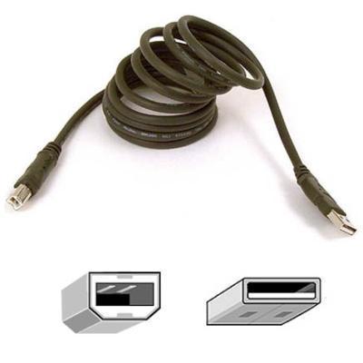 Belkin F3U133-03 Hi-Speed USB 2.0 Cable 3 feet