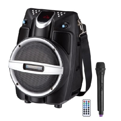 Technical Pro WASP550LBT 6.5 Battery-Powered BT PA System with Wireless Mic