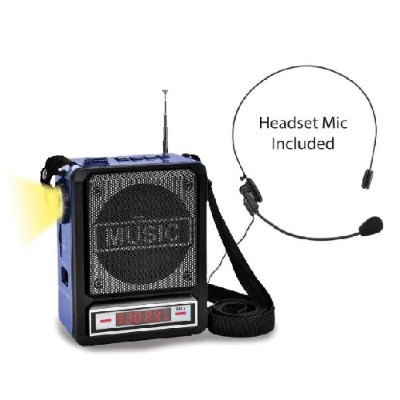 Technical Pro WASP100 Rechargeable BT Speaker with Headset Mic and LEDTorch