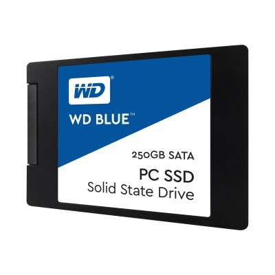 WD WDS250G1B0A 250GB Blue Solid State Drive - 2.5in