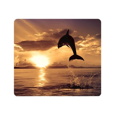 Fellowes 5913401 Recycled Mouse Pad Dolphin Jumping - Mouse pad - multicolor