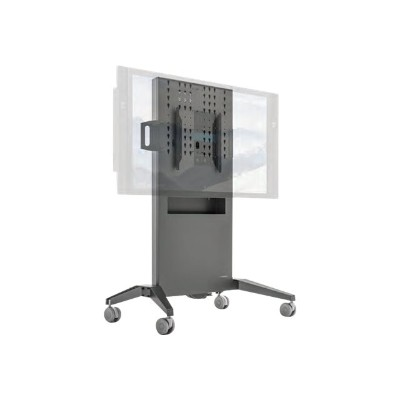 Salamander Designs FPS1/FH/GG FPS Series FPS1/FH/GG Fixed height mobile stand - Cart for LCD / plasma panel - powder-coated steel - graphite - screen