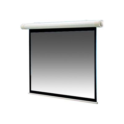 Draper  INC. 136008 100 Salara Motorized Projection Screen