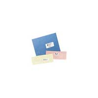 Avery Dennison 5162 White Mailing Labels - 100 sheets