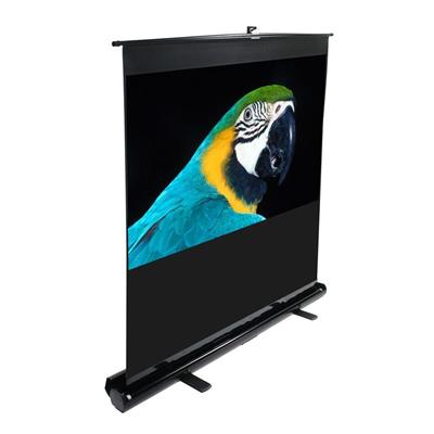 Elite Screens F100NWV 100 ezCinema Portable Floor Stand TelescopingPull Up Projection Screen