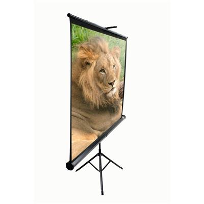Elite Screens T85NWS1 85 Tripod Projector Screen 60 x 60