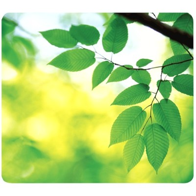 Recycled Mouse Pad Leaves - Mouse Pad
