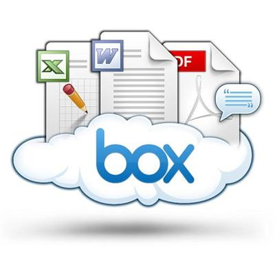 Box.net BOX BUSINESS Business Edition (1 Year Subscription)