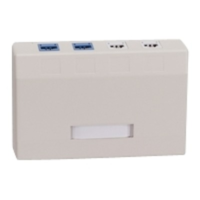 Black Box WP377-R4 Surface mount box - wall mountable - electric ivory - 2 ports