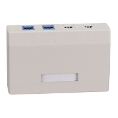 Black Box WP378-R4 Surface mount box - gray - 2 ports
