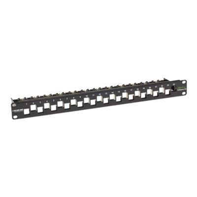 Black Box C6AMP70-24 GigaTrue CAT6A Staggered Blank Patch Panel - Patch panel - 1U - 19 - 24 ports